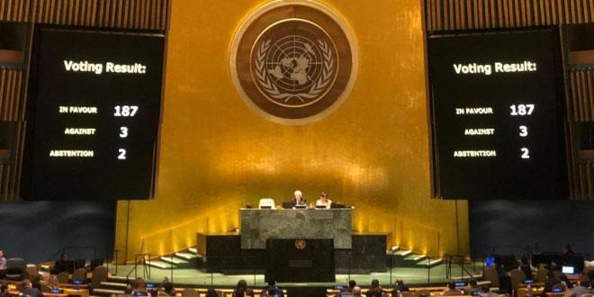 El bloqueo asfixia y daña a la familia cubana, afirma Canciller (+Video)