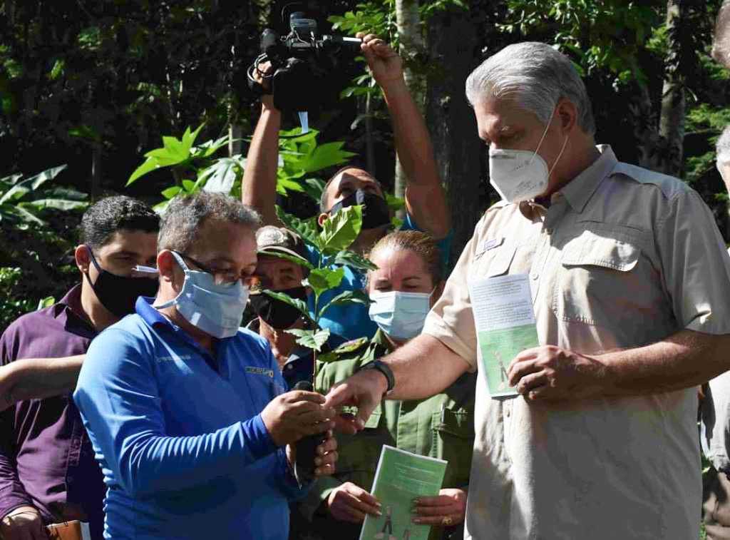 Claves para soñar y continuar Cuba