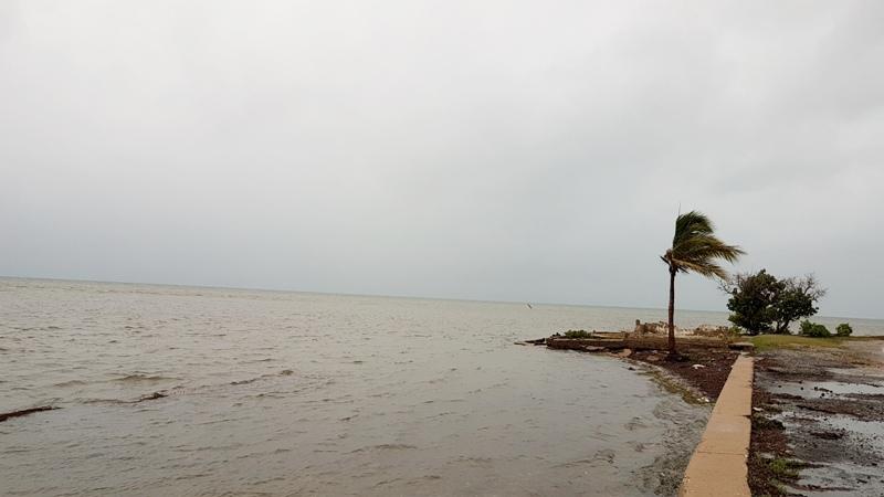 Sin daños en Camagüey tras paso de la Tormenta Tropical Elsa (+Audio)