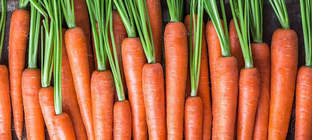 ¿Cómo hacer turrones de zanahoria?