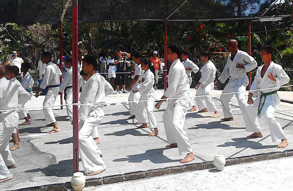 Artes marciales en Cuba: Ernesto Guzmán y el estilo Shorin ryu (+Video)