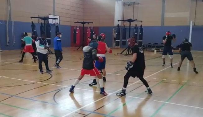 Finalizan con éxito boxeadores entrenamientos en Alemania