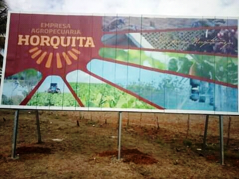 Empresa Agropecuaria Horquita de Cienfuegos, sembrará papas en 380 hectáreas (+Audio)