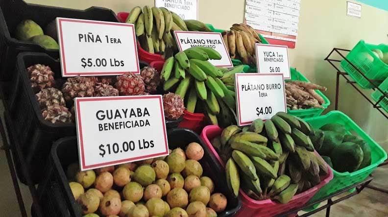 Abren sus puertas en Matanzas mercados agropecuarios de nuevo tipo