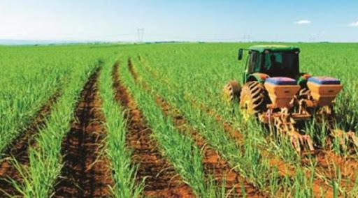 Reorganizan empresas azucareras favorecidas por la autonomía