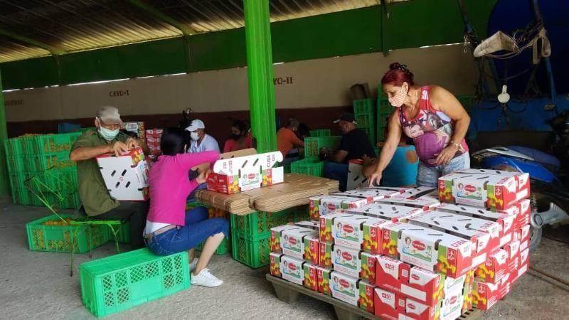 La minindustria aportando alimentos para el pueblo (+Audio)
