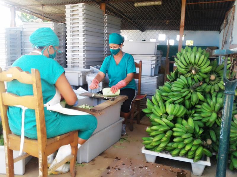 Experiencias de la eficiente minindustria cienfueguera 26 de Julio (+Audio)