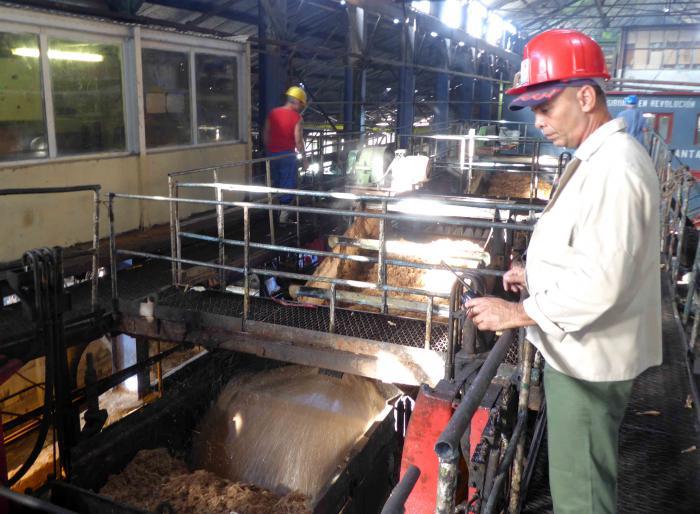 Una mirada diferente a la política de empleo en Cuba (+Audio)