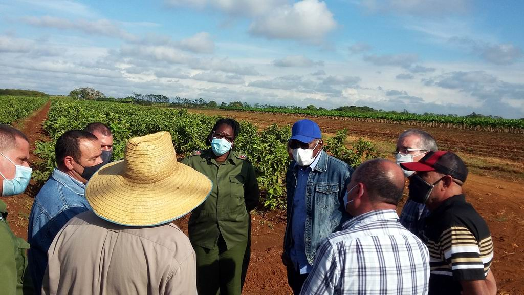 Chequea Salvador Valdés áreas productivas y de impacto económico en Mayabeque