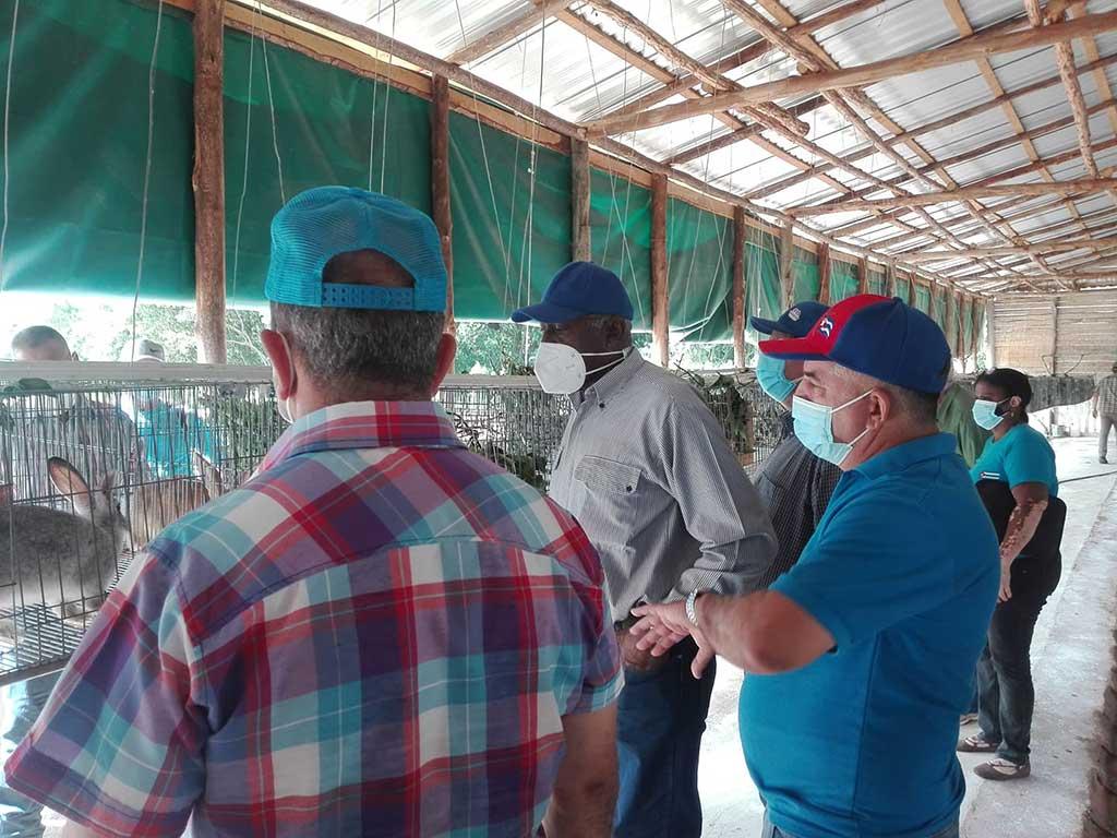 Llama Valdés Mesa en Pinar del Río a lograr sostenibilidad en las producciones agrícolas (+Audio)