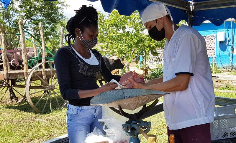 Campesinos de Camagüey comercializan carne vacuna