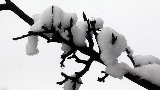 La lluvia, la nieve, y el granizo, fenómenos atmosféricos que nos atraen