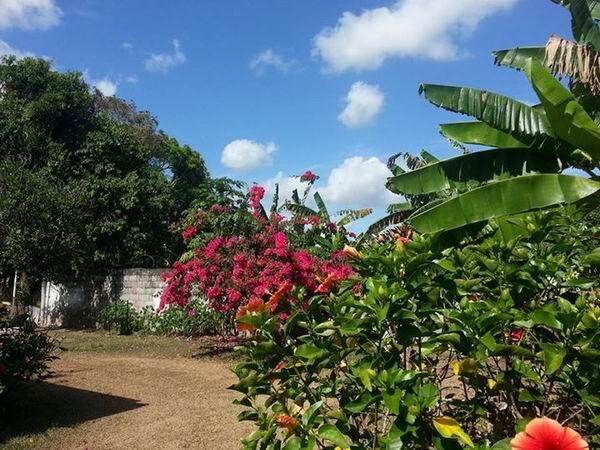 El tiempo en Cuba para el 11 de febrero de 2021
