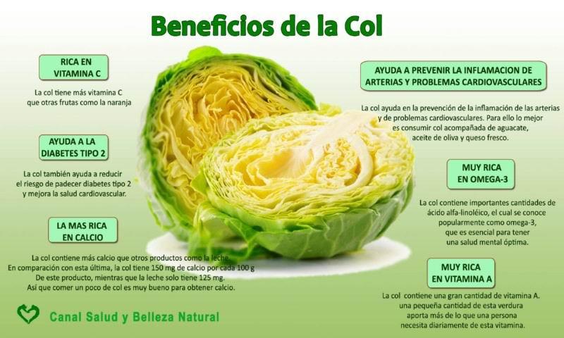 Beneficios de la Col