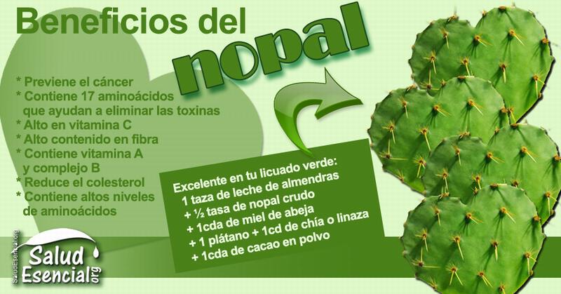 Nuevas de la guayaba y otras plantas medicinales.