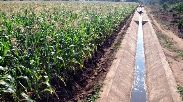 Analiza FAO iniciativa ante la escasez de agua