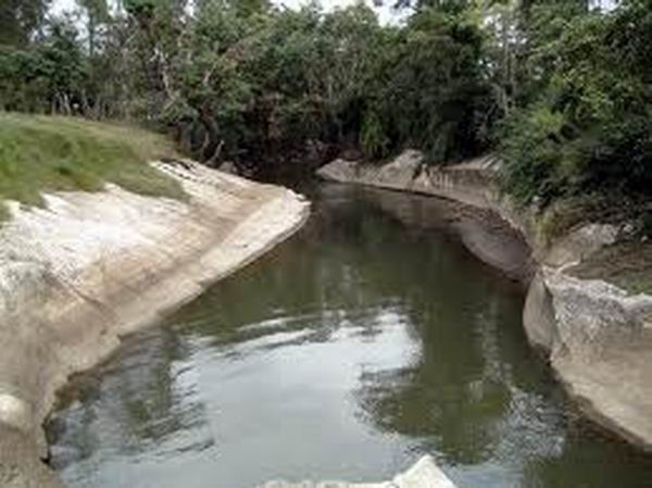 Environmental actions in favor of the Río Máximo in Camagüey
