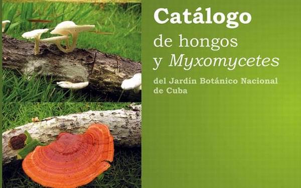 Catálogo de hongos y Myxomycetes