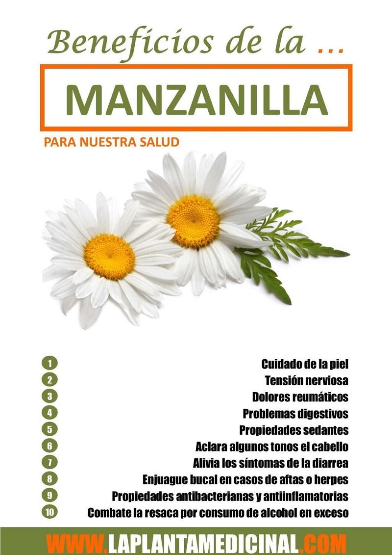 La manzanilla, un remedio natural de uso eficaz durante siglos