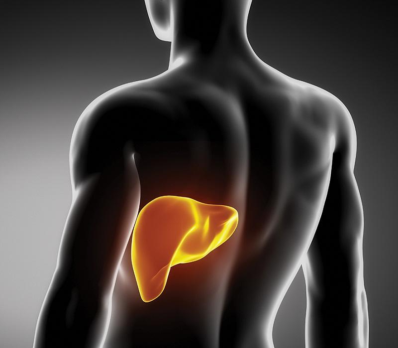 Algunos alimentos muy beneficiosos para un hígado limpio