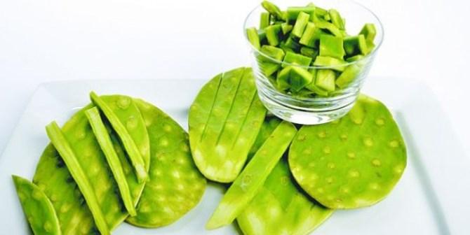 Afirman que el consumo de cactus es muy efectivo en pacientes con diabetes