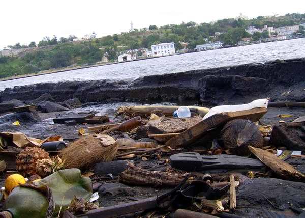 El 80 por ciento de las sustancias que contaminan el medio ambiente tienen su origen en la tierra