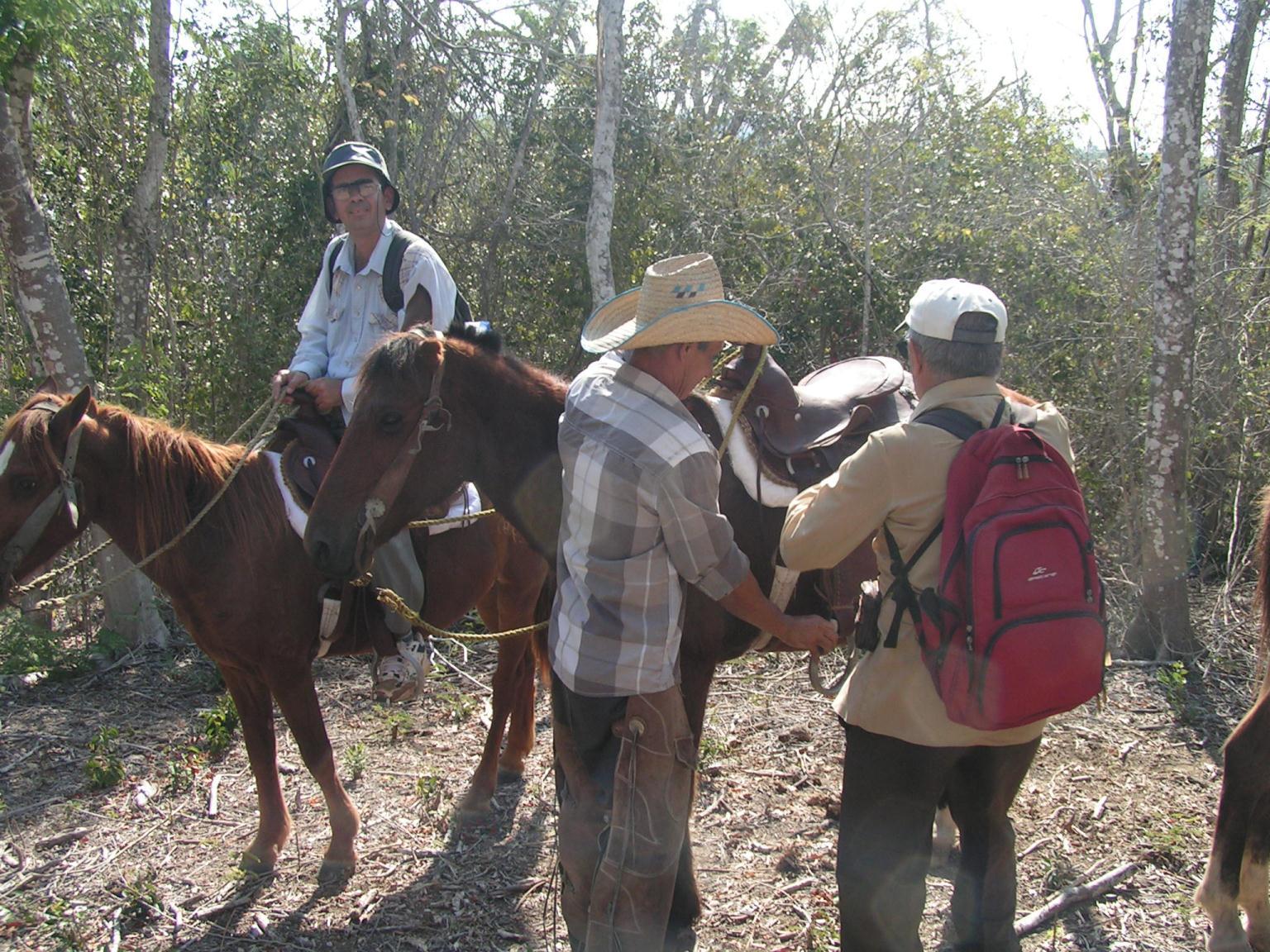 Hallazgos arqueológicos en Laguna de Guanaroca