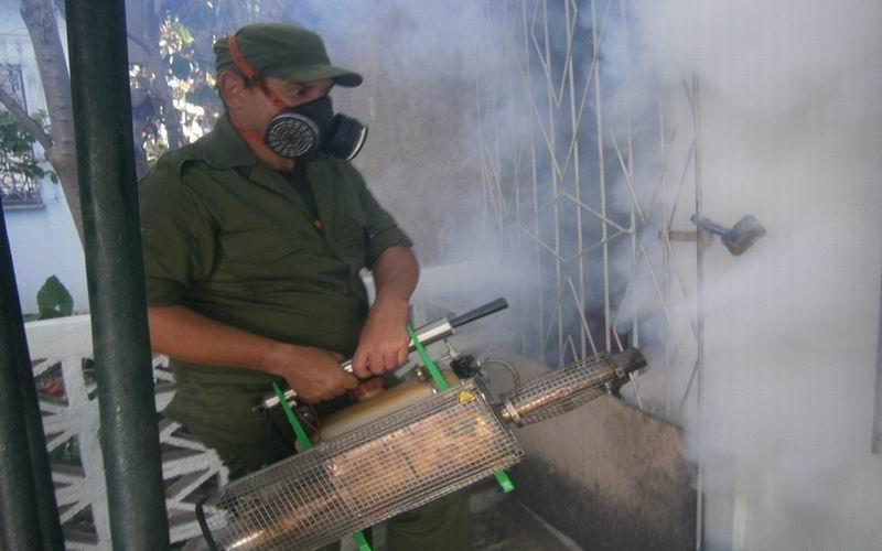 Cienfuegos combate el mosquito del género Aedes