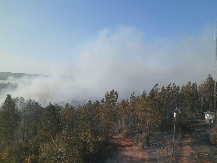 Afecta incendio forestal bosques de Pinar del Río. Foto tomada del FB de Radio Guamá