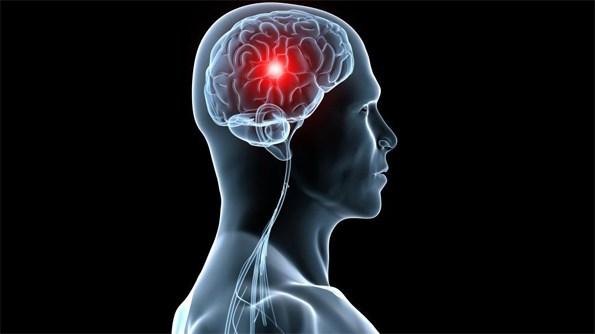 Destacan resultados del Congreso Mundial de Psicofisiología