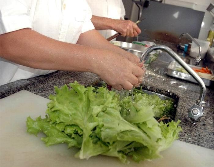 Formas efectivas para la conservación de los vegetales