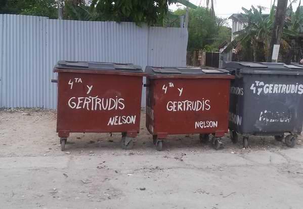 Imágen de la comunidad después de la iniciativa de Nelson Cortina Rizo. Foto: Alhija Villalón