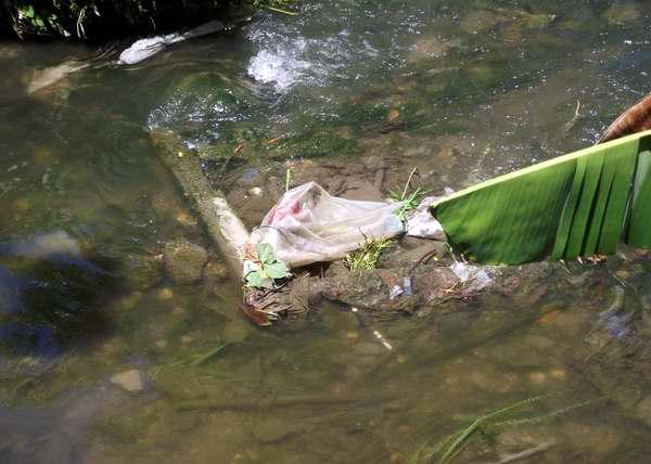 los ríos son muy vulnerables a la contaminación