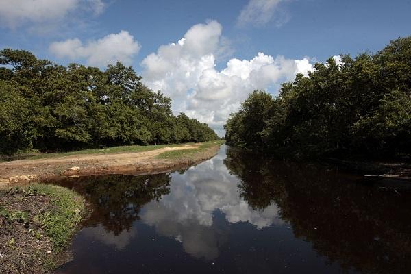 Expertos de siete naciones debaten sobre el futuro de los humedales