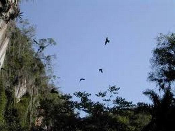 Proyecto comunitario favorece conservación del medio ambiente en Camagüey