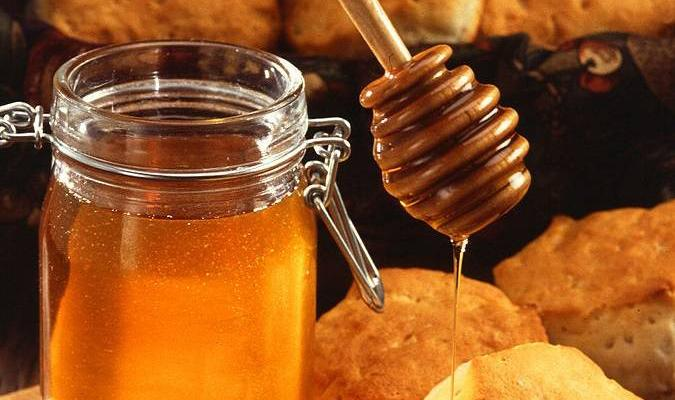 The Honey as One of the Most Nutritious Kind of Foods