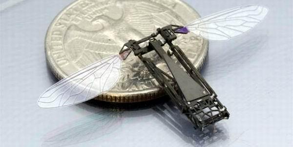 Construyen mosca robótica de fibra de carbono