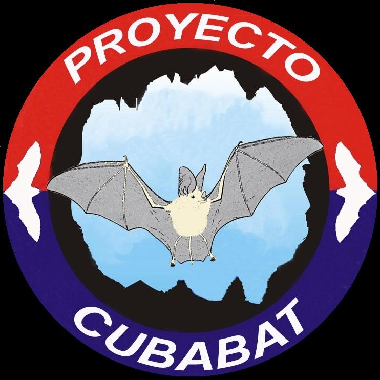 Un festival para el murciélago en Matanzas: arte y ciencia