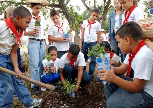 Florida sede nacional del concurso concienci verde for Importancia economica ecologica y ambiental de los viveros forestales