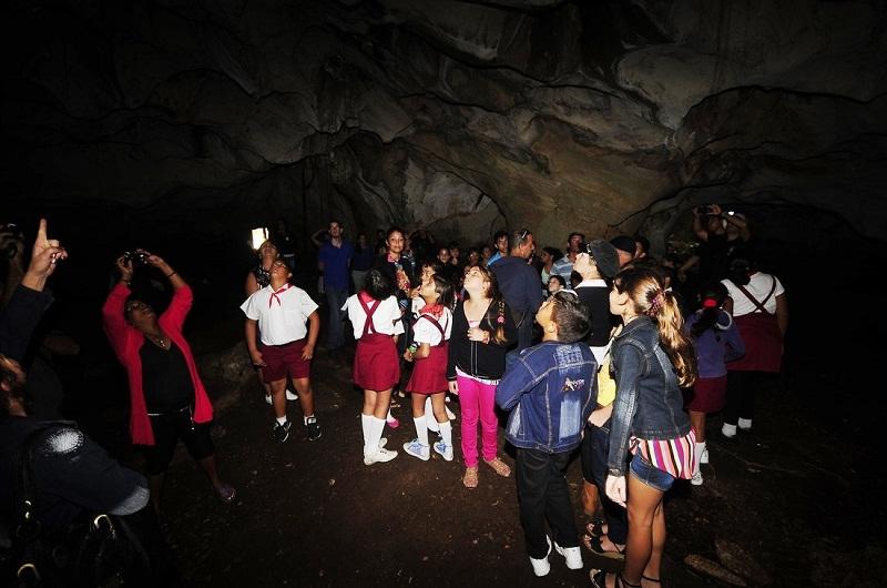 Un festival para el murciélago en Matanzas: arte y ciencia (+Fotos)