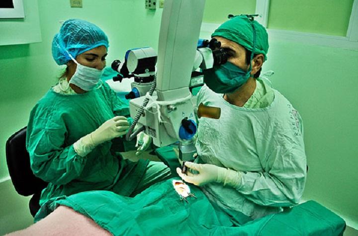 XIII Congreso cubano de Cirugía (+Audio)