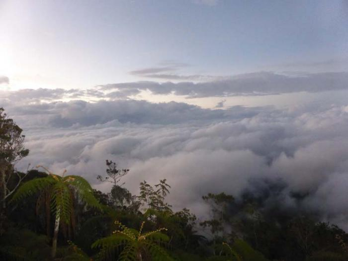 A New Environmental Path to Climb the Turquino Mountain