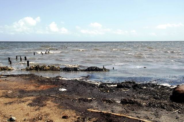 Así quedó la línea de la costa en Puerto Piloto.