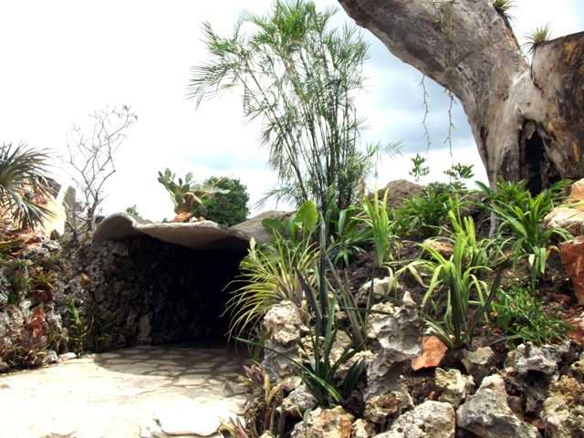 Parque Botánico de Camagüey: entre naturaleza y novedad científica