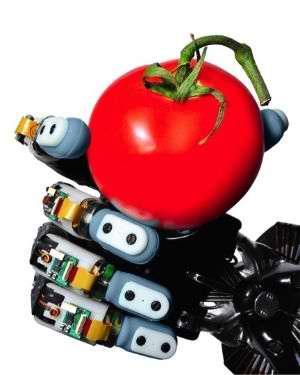 Crean un robot con un tacto más sensible que el del hombre