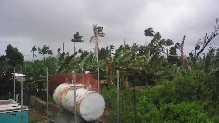Hurricane Irma: Severe damages to Cuban agriculture. Photo by Niolvy Rguez