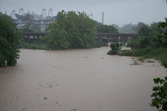 Lluvias asociadas a la tormenta tropical Colin provocan inundaciones. Foto: Alejandro Rosales