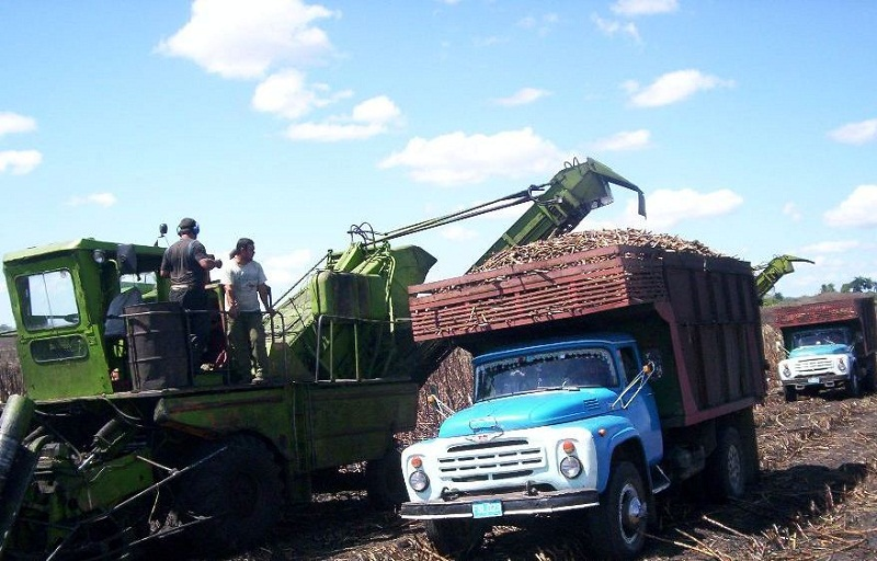 Examinó presidente cubano marcha de la zafra azucarera en el país