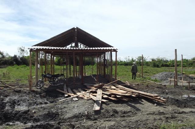 En asentamiento rurales del municipio de Minas ya se levantan las llmaadas popularmente petro-palmas