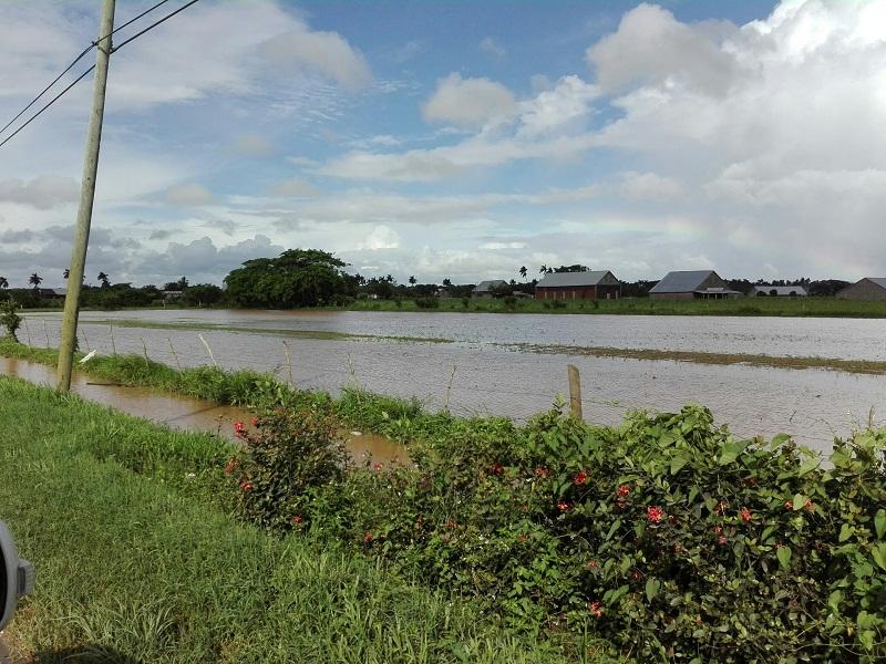 Adoptan medidas en Pinar del Río ante persistencia de precipitaciones